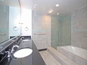Master Bathroom-7